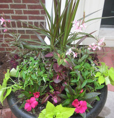 traditional outdoor planters by Kim Gamel