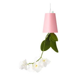 Recycled Sky Planter Small Blue Design By Boskke, Pink - Defying gravity, our unique upside-down planter encourages abundant greenery at home and at work, without sacrificing floor space. The Sky Planter, with its innovative design, allows you to: Produced from recycled plastic, the new Sky Planter Recycled range are available in pink, green, blue and white. A float-stick indicates the water level and two fixed-length hanging wires come included with each planter. For the keen urban gardener, this range is the perfect solution to get that ceiling garden started.