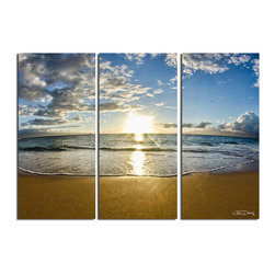 """Ready2HangArt - Ready2HangArt Christopher Doherty 'Maui' Canvas Wall Art (3 Piece) - Renowned photographer Chris Doherty, takes you on adventures under and above water thru his imagery. This photograph is offered as part of a limited """"Home Decor"""" line, being the perfect addition to any living or work space."""