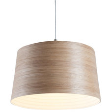 Contemporary Pendant Lighting by EcoFirstArt