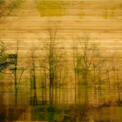 "Parvez Taj - Wall Prints - Lake Muskoka - Bamboo, 24""x32"" - Relying on both the poetry and the practicality of going green, artist Parvez Taj has created this image of a lakefront line of trees using renewable bamboo as his canvas, and UV-cured inks. The result is a meditation on nature that can center your entire room."
