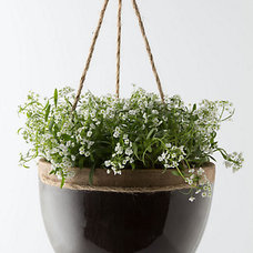 Contemporary Outdoor Pots And Planters by Anthropologie