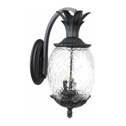 Acclaim Lighting Lanai Outdoor Sconce - Light up the front of your house with these tropical sconces. Perfect for any warm-climate or vacation home.