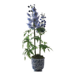 Winward Designs - Potted Delphinium Cache Pot Flower Arrangement - Graceful blooms of perfect blues delphinium fils any space with a feeling of serenity.