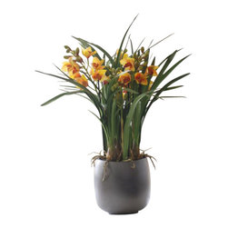 Winward Designs - Cymbidium Orchid In Pot Flower Arrangement - Give your gardening gloves a rest and invest in a permanent potted orchid for year-round beauty. This bounty of blossoms makes a striking impression as it appears to thrive in a beautiful ceramic pot. Be sure to reserve a special place in your home or office for this showstopper.