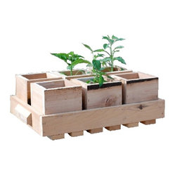 Handmade wooden planters with tray