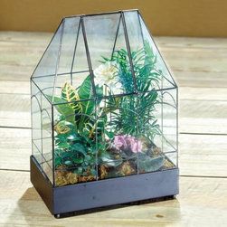 H. Potter - H. Potter Weston Table Top Terrarium Multicolor - WAR117 - Shop for Planters and Pottery from Hayneedle.com! The clean yet attractive design of the H. Potter Weston Table Top Terrarium makes it a lovely addition to any room in the house. A front opening panel in the center of the roof allows easy access while misting your plants. Its compact design makes it easy for you to display your plants on a table in your sitting area or a mantle in your family room.Terrariums provide a unique opportunity to garden under glass during any season. Plant a rainforest desert or woodland arrangement to create your own force of nature. These small greenhouses are warmed by the sun and trap moisture inside to produce a prosperous miniature garden. The distinctive glass windowed container offers traditional styling and functionality that can be used as a protective showcase for any cherished favorites. About H. Potter ProductsOver the past nine years H. Potter has continually enhanced all aspects of their business to fill the desires of their growing list of satisfied customers. With the entrance of 2006 they were able to offer over 100 impressive designs. Not only are they always striving to bring you products that are new bold and unique but they also work hard to increase the overall quality of the items. They do this by incorporating heavier materials stainless steel hardware and dramatically expanding their copper container business. H. Potter artisans design many 100% hand-made pieces to fit effortlessly into your home or garden setting.