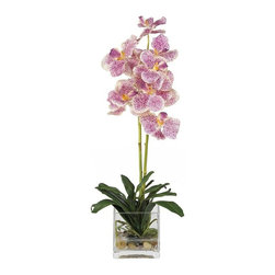 Nearly Natural - Vanda with Glass Vase Silk Flower Arrangement - Not for outdoor use. Beautiful vanda orchid floral. Anchored by river rocks and lush foliage. Artificial water set in a beautiful glass vase. Included container size: 4 in. W X 4 in. H8 in. W X 6.5 in. D X 21 in. H (4lbs). Treasure the beauty of these rare exotic Vanda orchids. Two slender stems filled with brightly speckled blossoms make this duo a treat to behold. Nestled in a bed of rich green leaves, these lovely flowers will provide you with years of care free pleasure. A square glass vase coupled with artificial water and river rock adds a handsome touch to this breathtaking arrangement.