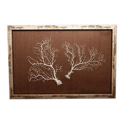 Two White Seafans on Chocolate Shadowbox - One well-chosen pair of sea fans, tilted slightly away from one another so that the dense and delicate spread of their impossibly fine branches fills a large and well-proportioned space, is mounted within the rectangular frame of this seaside shadow box so that the complexity of their texture can bring overpowering natural beauty to your home.  The background, also subtly textured, contrasts with the sea fans to perfection, while the mottled metallic of the frame ties the two neutral shades together.