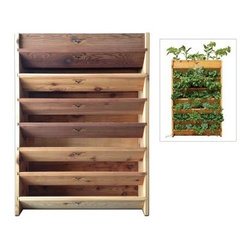 Gronomics Vertical Garden Planter - Crafted from western red cedar, the Gronomics Vertical Garden has a linear growing space of 17 feet. This vertical garden may be used indoors or out and comes complete with an irrigation kit. It has a soil capacity of 4.5 cubic feet and a 2 square foot footprint.About GronomicsWith Gronomics, you no longer need a big yard to do your gardening. The Minnesota-based company manufactures unique, ergonomically designed 100% Western Red Cedar garden planters that offer tool-free assembly. Gronomics makes everything from elevated beds, raised beds, planter benches and much more, all of which are designed to make gardening easy and more accessible for all ages. Herbs, vegetables and flowers can all be tended to while standing or sitting and the company's unique designs even allows easy access for those in wheelchairs.