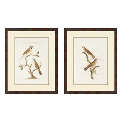 Paragon - Nozeman Birds II PK/2 - Framed Art - Each product is custom made upon order so there might be small variations from the picture displayed. No two pieces are exactly alike.