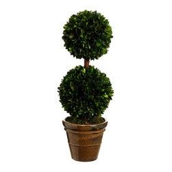 Silk Plants Direct - Silk Plants Direct Preserved Boxwood Two Ball Topiary (Pack of 2) - Pack of 2. Silk Plants Direct specializes in manufacturing, design and supply of the most life-like, premium quality artificial plants, trees, flowers, arrangements, topiaries and containers for home, office and commercial use. Our Preserved Boxwood Two Ball Topiary includes the following: