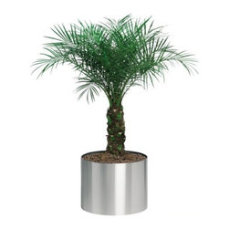 Blomus - GREENS Round Planter by Blomus - Keep the office and home looking clean and green with the Blomus GREENS Round Planter. Made of stainless steel with a flexible plastic liner. Plants have never looked this modern, sleek and smart. Blomus, headquartered in Germany, specializes in the design and manufacture of beautifully engineered home and office accessories in modern stainless steel styles.