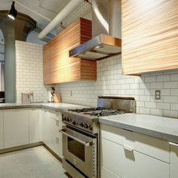 Kitchen - Concrete Cat Design House