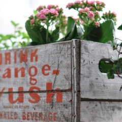 eclectic  vintage crate planter