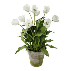 Tulips in Clay Pot, White