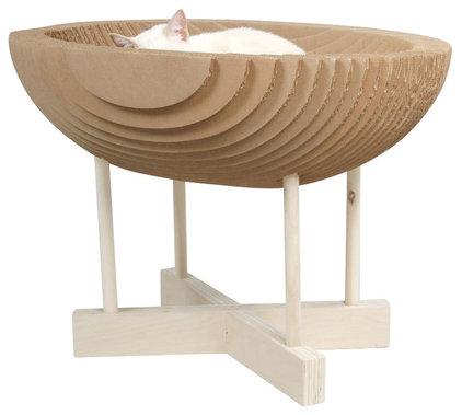 Contemporary Pet Supplies by Design Public