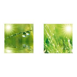 Platin Art - Platin Art A New Day - Set of Two - A New Day - Set of Two by Platin Art Deco Glass Wall Decor - Art on Glass - A New Day - Set of 2 - 11.75-by 11.75-Inch each Wall Art (2)