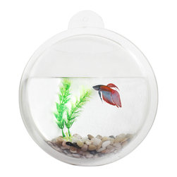 Danya B. - Acrylic Fishbowl Wall Mount - Give your fish friends some perspective by mounting their home on your wall. This unique fish bowl comes complete with rocks and an artificial plant, ready for you to add water and fish and sit back and watch your pet swim.