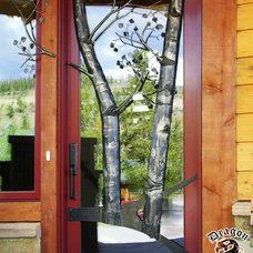 Modern Front Doors by Dragon Forge LTD