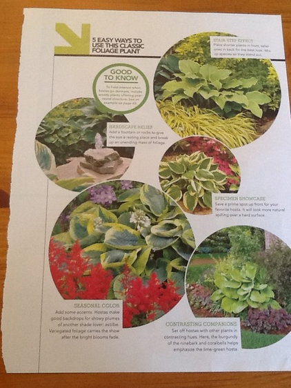 Ways to use hostas