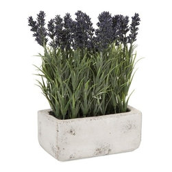 """IMAX - Potted Lavender - The antiqued cement planter is filled with this botanical explosion of lavender, adding a freshness to any home.  Item Dimensions: (9.5""""h x 3.5""""w x 8.5"""")"""