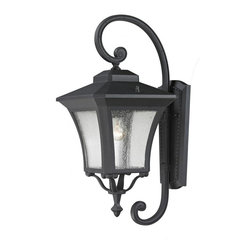 One Light Sand Black Clear Seedy Glass Wall Lantern - Black cast aluminum curved hardware compliments the seedy clear glass on this unique yet traditional outdoor wall mount fixture.