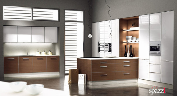 Contemporary Kitchen Cabinetry by SPAZZIUSA