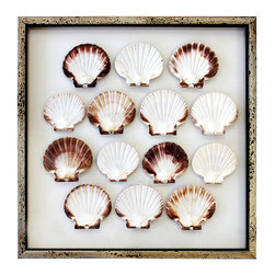 Framed Scallop Shells 24 x 24 - There is a memory of gathering shells along a soft sand shore, where the lilt of laughter carried among the whispered beating of shore birds' wings. In 14  Scallop Shells, the blended coloration of umber and creamy white is artfully displayed in a simple array of gathered shells. The acid washed frame lends a hint of casual coastal appeal. Double framed between two sheets of glass, so your wall color becomes the mat.