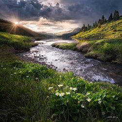 Last Light - The last rays of sunlight skim across the foliage around Clinton Lake, near Copper Mountain Colorado.