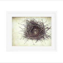 "Lupen Grainne Framed Print, Nest, Mat, 16 x 20"", White - This is an image of an abandoned nest the photographer found in an enormous passionflower vine. The photo is at once charming and haunting, conjuring up thoughts of flight and home. 13"" wide x 11"" high 20"" wide x 16"" high 42"" wide x 28"" high Alder wood frame. Black or white painted finish; or espresso stained finish. Beveled white mat is archival quality and acid-free. Available with or without a mat. {{link path='/shop/accessories-decor/pb-artist-gallery/artist-gallery-lupen-grainne/'}}Get to know Lupen Grainne.{{/link}}"