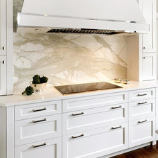 Contemporary Kitchen Cabinetry by Toledo Cabinets