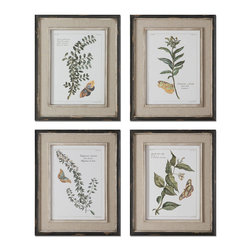 Uttermost - Uttermost Butterfly Plants 21x17 Rectangular Framed Art (Set of 4) - Prints are Accents by Heavily Distressed, Black Outer Wooden Frames with Heavily Textured, Off-white Inner Lips with a Heavy Taupe Wash. Center Portion of Frames are Covered in a Sand Faux Linen.