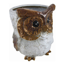 Zeckos - Decorative Ceramic Brown and White Owl Planter 9.5 In. - This adorable owl planter adds a wonderful accent to your home, porch, patio, or garden. Made of ceramic, it measures 9 1/2 inches tall and approximately 7 1/2 inches in diameter. The owl is painted in shades of brown and white, and has a glossy finish. This piece looks great on shelves, tables, and plant stands. Fill it with silk plants for indoor use, or with live plants for outdoor use. It makes a great housewarming gift, and is sure to be admired.