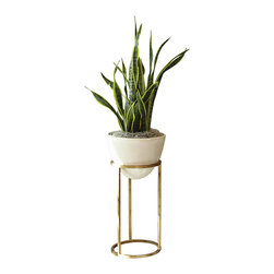 Studio A - Wise Egg - Small - The Wise Egg Planter is cast from a biodegradable, eco-friendly stone composite containing no resin. A removable fiberglass liner keeps the container water tight. Gold-finished iron stand. Available in three stand heights. Each size sold separately.