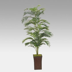 6.5-Foot Areca Palm in Square Metal Planter - Bring a bit of tropical elegance to any room with the 6.5-Foot Areca Palm in Square Metal Planter. It features a beautiful green areca palm with hundreds of lush leaves for a full authentic look. The square metal planter has rustic charm. The arrangement measures 21W x 78H inches and weighs 18 pounds. About D & W Silks Inc.D & W Silks imports and manufactures interior silk foliage trees floral arrangements and plants for wholesale customers. Founded by E.M. Deeley the Louisville Ky.-based company is led by sons Chris and Sean. They continue their father's commitment to providing superior customer service and creating the latest styles of high quality silk foliage for interior designers and the furniture industry.
