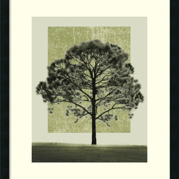 Amanti Art - Nature's Shapes I Framed Print by Harold Silverman - Artist Harold Silverman has taken a simple photo of a tree and turned it into a much more interesting piece of art. This nice print adds a simple spot of color to your room.
