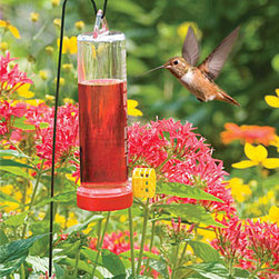 Complete Hummingbird Garden Kit - The hummingbirds are on their way back and when they get here, they will be famished.  You'll be ready with this hummingbird garden kit.  It's designed to keep wasps out, too so your birds can eat in peace.