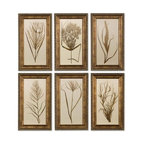 Uttermost - Uttermost 41151  Wheat Grass Framed Art Set/6 - This set of prints features wooden frames finished in bronze undertones with brown and black distressing and a gray glaze. prints are under glass.