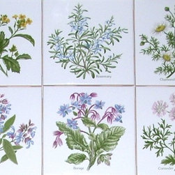 "Mottles Murals - Herb Set of 6 Ceramic Tile Accents Kiln Fired 4.25"" x 4.25"" Sage Rosemary Borage - Herb"