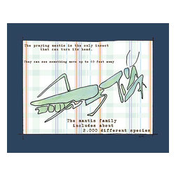 Oh How Cute Kids by Serena Bowman - Did You Know - Praying Mantis, Ready To Hang Canvas Kid's Wall Decor, 8 X 10 - Each kid is unique in his/her own way, so why shouldn't their wall decor be as well! With our extensive selection of canvas wall art for kids, from princesses to spaceships, from cowboys to traveling girls, we'll help you find that perfect piece for your special one.  Or you can fill the entire room with our imaginative art; every canvas is part of a coordinated series, an easy way to provide a complete and unified look for any room.