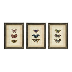 "IMAX CORPORATION - Butterfly Collection Wall Art - Set of 3 - Set of three framed colorful butterfly study prints. Comes in various sizes measuring around 17.5""L x 7""W x 13.4""H each. Shop home furnishings, decor, and accessories from Posh Urban Furnishings. Beautiful, stylish furniture and decor that will brighten your home instantly. Shop modern, traditional, vintage, and world designs."