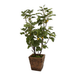 """60049 Potted Young Fig Tree by Uttermost - Get 10% discount on your first order. Coupon code: """"houzz"""". Order today."""