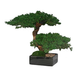 Double Monterey Bonsai - The Double Monterey Bonsai is consistently one of our most requested artificial bonsai trees. The preserved bonsai is two tiered and finished with permanent rock and preserved moss ground accents.
