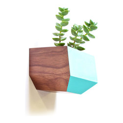 Revolution Design House - Sidecar Walnut, Blue - The Walnut and White Sidecar is the newest edition of the Boxcar series. The wall-mounted Sidecar is a succulent planter with a clear finish and a subtle accent of Bone-White. The geometric shape provides a nice contrast on any wall and gives your space a little addition of life. The installation is easy, only one screw goes directly in to your wall.