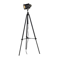 Dimond - Dimond D1735 Ethan Contemporary Adjustable Tripod Floor Lamp - With On/Off Line switch.