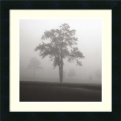 """Fog Tree Study I"" Framed Print by Jamie Cook"