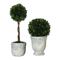 Uttermost - Preserved Boxwood Ball Topiaries Set of 2 - Preserved, natural boxwood foliage potted in stone finished, ceramic planters. Tall topiary has natural willow branches.
