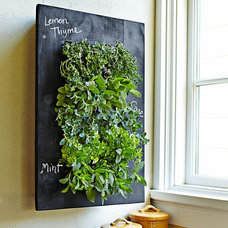 Contemporary Home Decor by Bright Green USA
