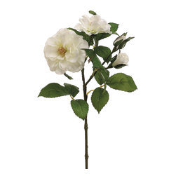 Silk Plants Direct - Silk Plants Direct Rose (Pack of 12) - Pack of 12. Silk Plants Direct specializes in manufacturing, design and supply of the most life-like, premium quality artificial plants, trees, flowers, arrangements, topiaries and containers for home, office and commercial use. Our Rose includes the following:
